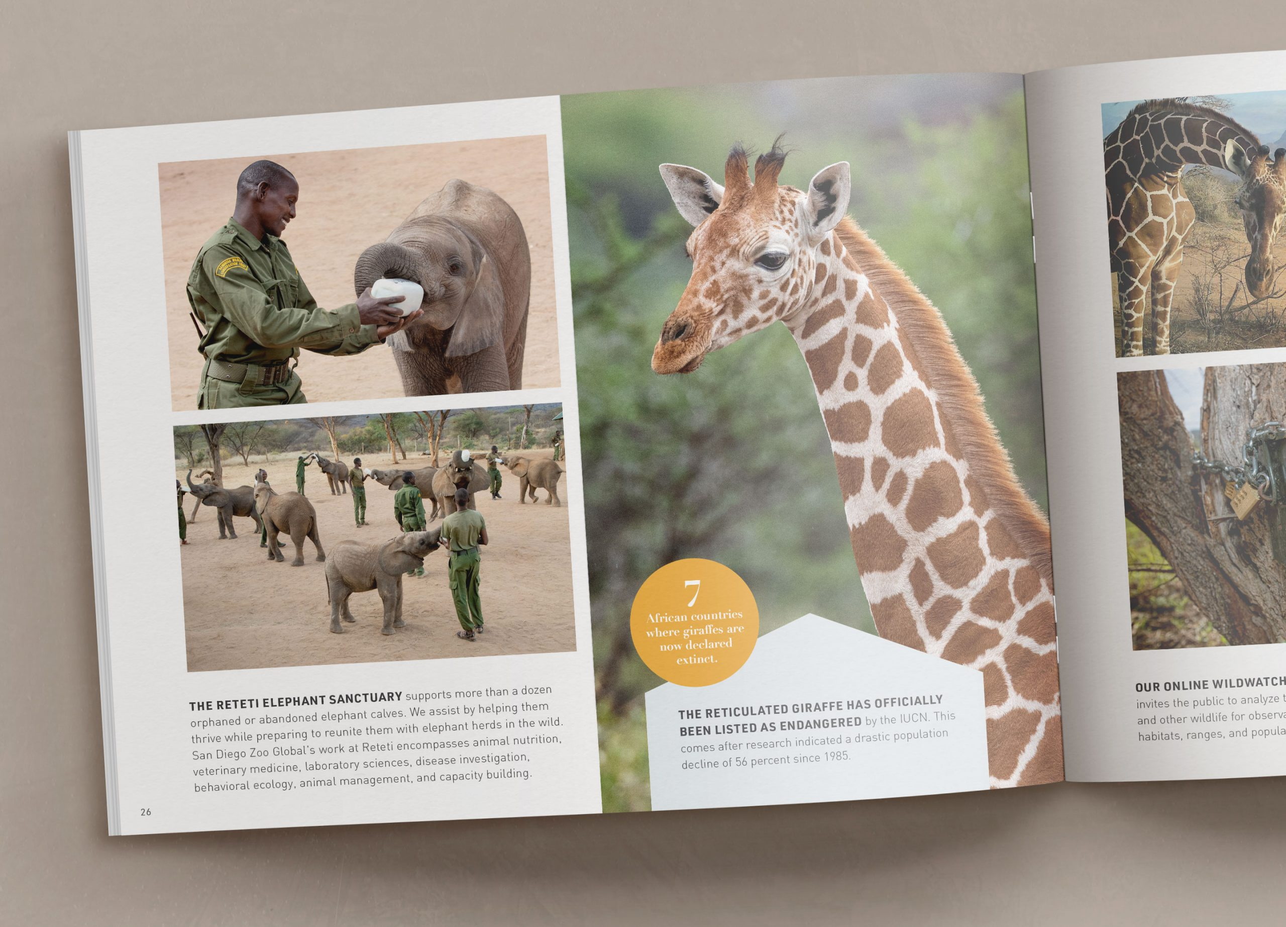 San Diego Zoo Global Institute for Conservation Research: Saving Species Worldwide